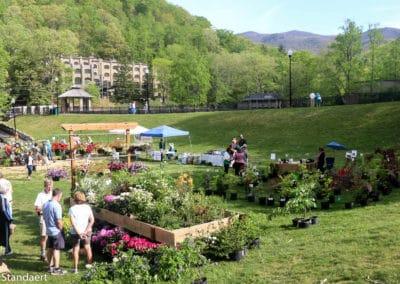 Native Plant Sale & Arbor Day Celebration