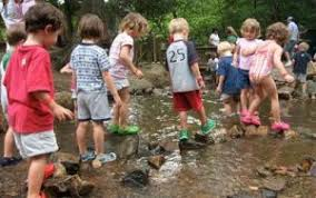 Montreat Children Outdoors Projects Launched by Landcare