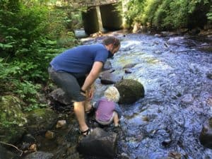 Montreat Citizen Scientists Unlocking Flat Creek Treasures