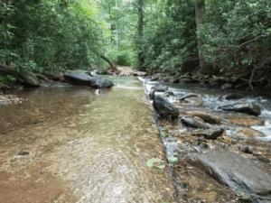 Flat Creek Treasure